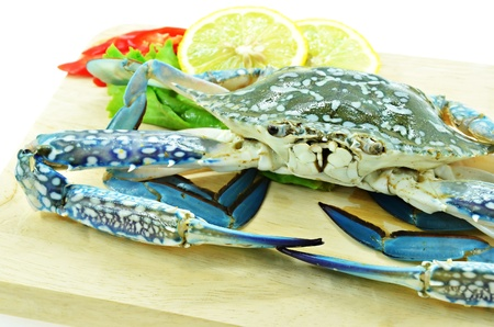 Close up fresh raw crab on chopping board photo