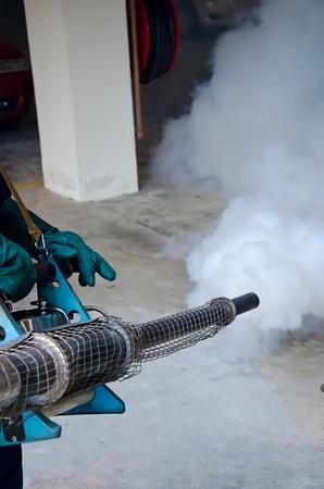 public health: Velado por la salud p�blica para el control del dengue Foto de archivo