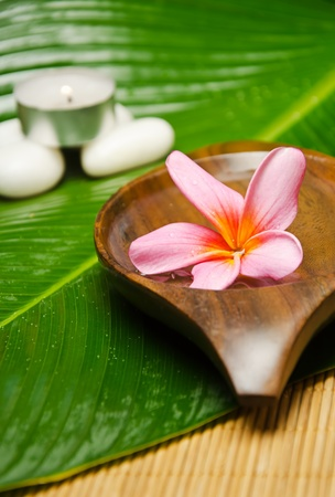 Spa treatment with red plumeria on green leaf photo