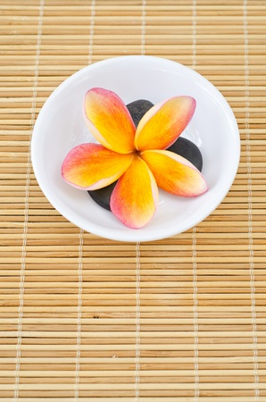 Frangipani flower in bowl with black stone Stock Photo - 13505876
