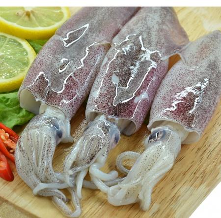 Fresh raw calamari and lemon Stockfoto