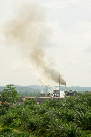 air pollution produced by the palm oil mill photo