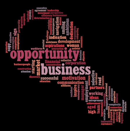 Business opportunity info-text graphics and arrangement concept Stock Photo - 15875178