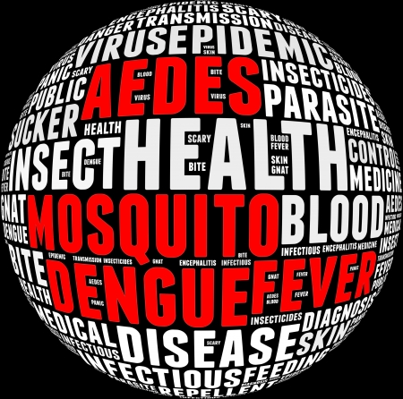 Dengue fever info-text graphics and arrangement with circle shape concept  photo