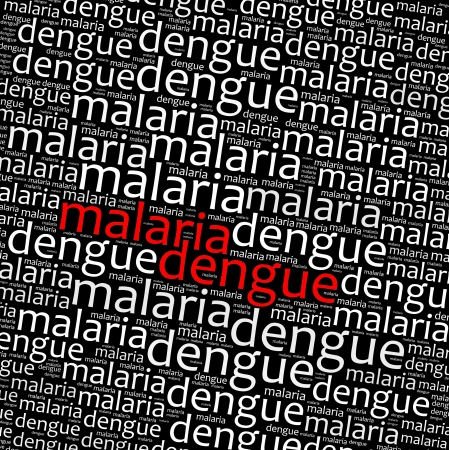 dipterus: Malaria and dengue info text graphics and arrangement  Stock Photo