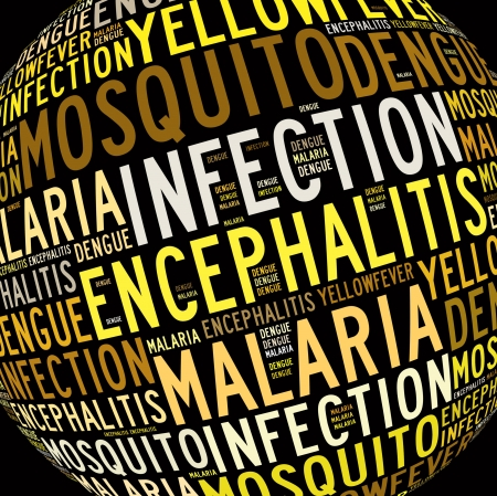 isolation: Mosquito infection diseases info text graphics and arrangement