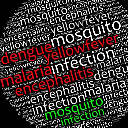 dengue: Mosquito infection diseases info text graphics and arrangement