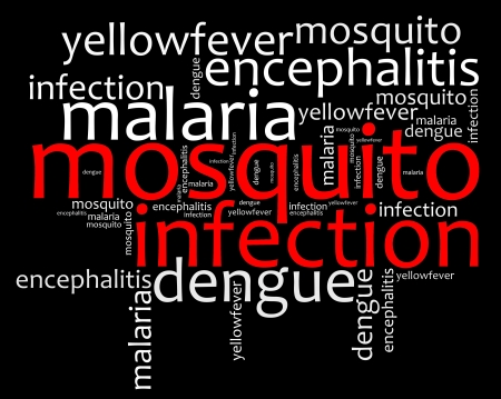 Mosquito infection diseases info text graphics and arrangement  photo