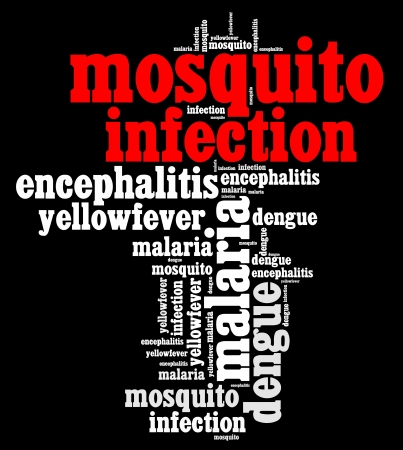 Mosquito infection diseases info text graphics and arrangement
