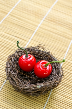 Sweet cherry on nest serve concept Stock Photo - 17946787