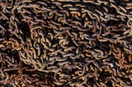 rusty chain: Rusty chain close up Stock Photo