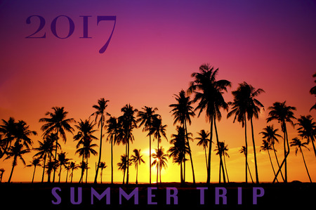New Year 2017 concept - Silhouetted of coconut tree during sunrise with word Summer Trip