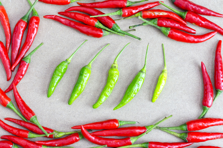 Groups of red and green chilli. Dare to be different concept.