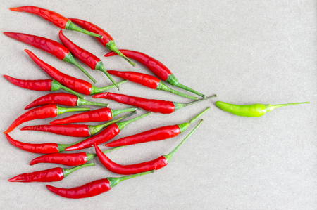 Fresh of red chilli and green chilli. Leadership and team leader concept.