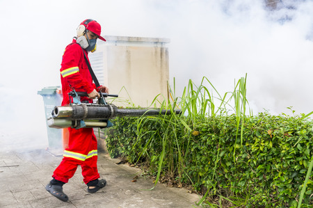 eliminate: PUTRAJAYA, MALAYSIA - JULY 29, 2017 : Unidentified pest control operator from Ministry Of Helath Malaysia fogging to eliminate mosquito for preventing spread dengue fever and zika virus.