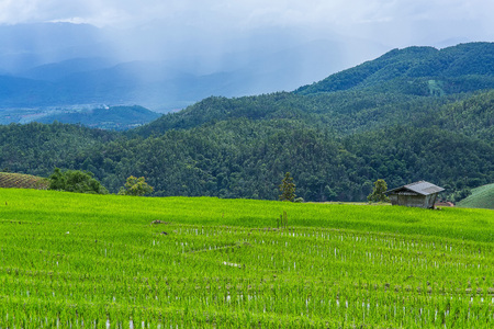 little hut and Rice terrace in a cloudy lighting surrounded by trees and mountains with a raining storm in the background at Pa Bong Piang near Inthanon National Park and Mae Chaem, Chiangmai, Thailand. Stock Photo