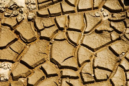 scorching: Dried soil cracking under the scorching sun