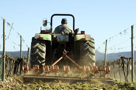 Farmer using a tractor ploughing a vineyard, back view.