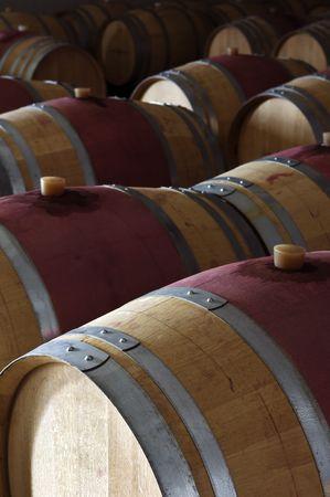 subterranean: Oak wine barrels in a modern winery, Alentejo, Portugal