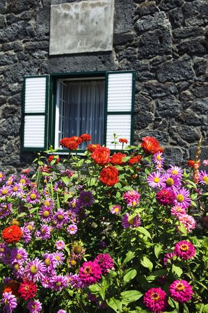 Bunch of flowers in front of a stone house photo