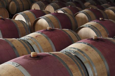 Oak wine barrels in a modern winery, Alentejo, Portugal