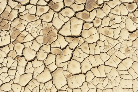 barrenness: Detail of a cracked dry soil in water shortage time Stock Photo