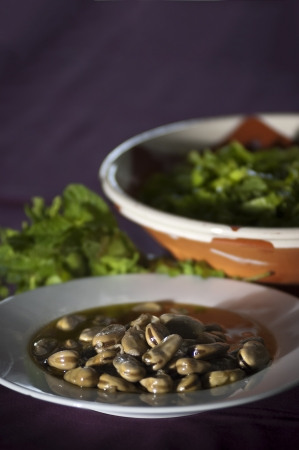 Real food photographed on location in traditional portuguese restaurants, broad beans soup - sopa de favas - Alentejo, Portugal photo