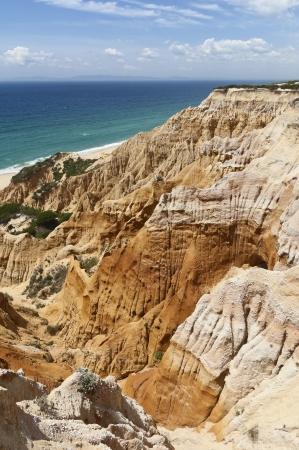 gale: Sandstone cliffs in Gale beach, Comporta , Portugal