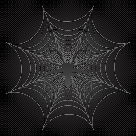 black spider and web, cobweb