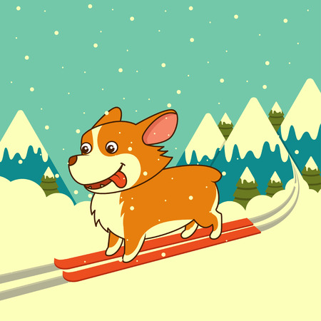 Vector dog skiing on winter mountains background. Welsh corgi dog. For Xmas, New Year poster, calendar