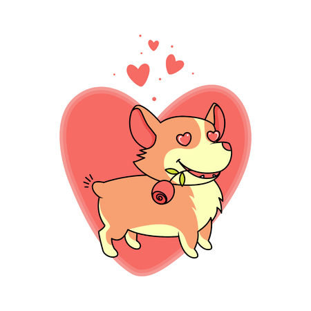 Dog with a rose in his mouth in love on a background of big red heart. Welsh corgi vector illustration. Çizim