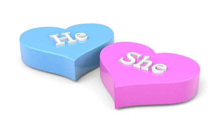 he and she: Couple of Blue and Pink Hearts with He She English Text on White Background Love Concept 3D Illustration Stock Photo