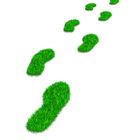 Green Grass Footsteps Path 3D Illustration on White Background