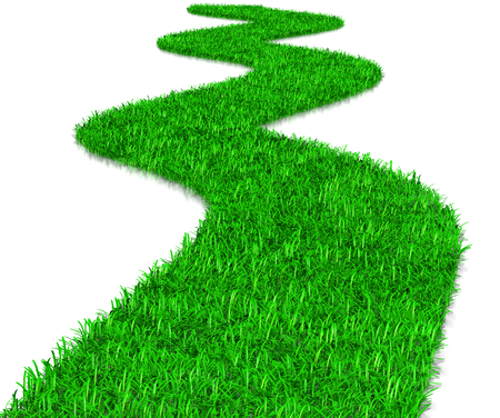 Green Grass Way 3D Illustration on White Background