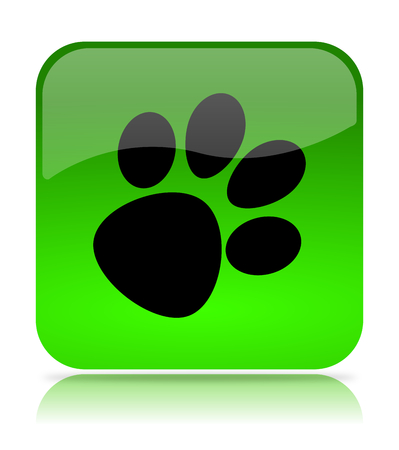 green footprint: Dog or Cat Footprint Green Button Icon Isolated on White Background Stock Photo