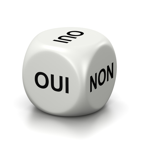 doubtfulness: One Single White Dice with Yes or No French Text on Faces on White Background 3D Illustration