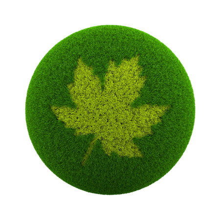 leaf shape: Green Globe with Grass Cutted in the Shape of a Leaf 3D Illustration Isolated on White Background