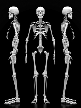 x ray: image of a white, a human skeleton on a black background Stock Photo