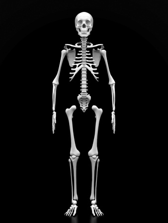 skeleton x ray: image of a white, a human skeleton on a black background Stock Photo