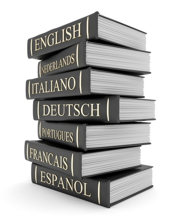 english dictionary: Picture pages,  Books bindings and Literature Stock Photo