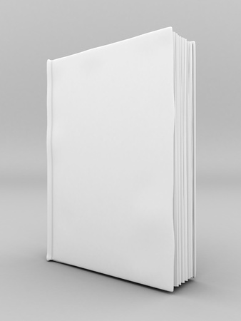 Picture pages,  Books bindings and Literature Stock Photo - 10614704