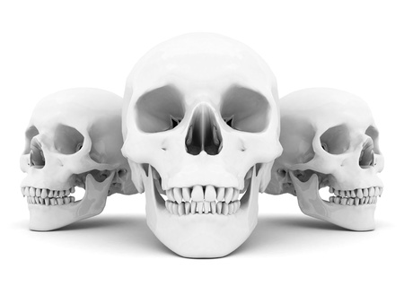 white skull on a white background isolated Stock Photo - 15623574