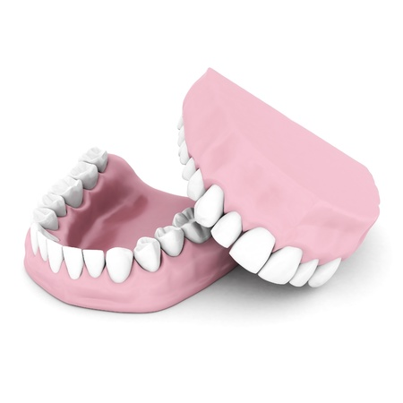 dentures: Dentures isolated on a white background