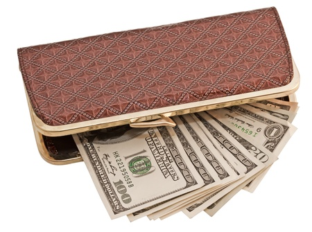 dollars in wallet, isolated on white background photo