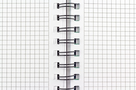 Open notebook with pages in a grid with binding. Stock Photo - 10387092