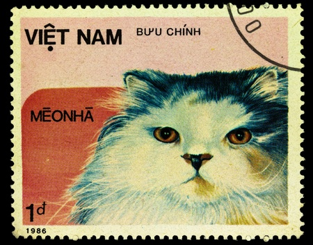 VIETNAM - CIRCA 1986. A stamp printed in Vietnam shows house cat, series, circa 1986 photo