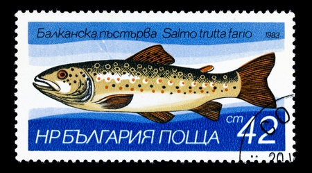 BULGARIA - CIRCA 1983. A stamp printed in Bulgaria, shows Brown trout - Salmo trutta fario, circa 1983