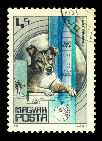 magyar: MAGYAR- CIRCA 1982: A stamp printed in magyar shows first dog Laika in space, series, circa 1982 Stock Photo