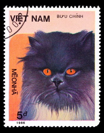VIETNAM - CIRCA 1986: A stamp printed in Vietnam shows house cat, series, circa 1986 photo