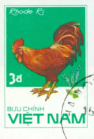 postmail: VIETNAM - CIRCA 1980: A stamp printed by Vietnam shows bird Chicken Ri, stamp is from the series, circa 1980s